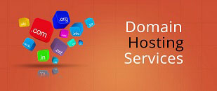 Web Hosting & Domains
